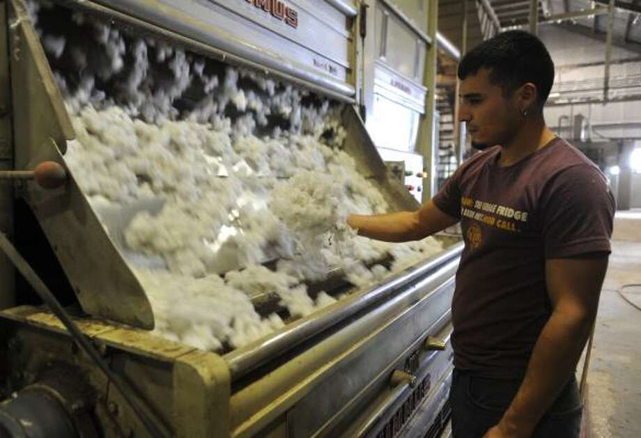 Margarito Rios checks the consistency of cotton during the ginning process at Winter Garden Co Op in Batesville, southwest of San Antonio. Texas is by far the nation's largest producer of the crop, so higher prices are likely to benefit its farmers. Photo: Billy Calzada:, Express-News