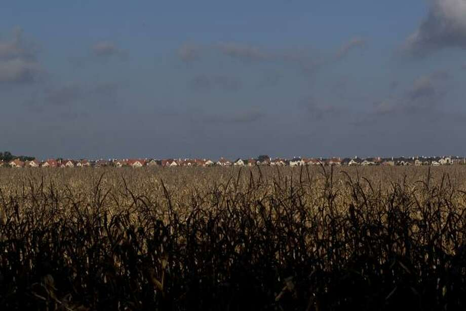 Farmland is becoming scarce near Sugar Land's Chelsea Harbour neighborhood in Fort Bend County, population 600,000.  Photo: Johnny Hanson, Houston Chronicle