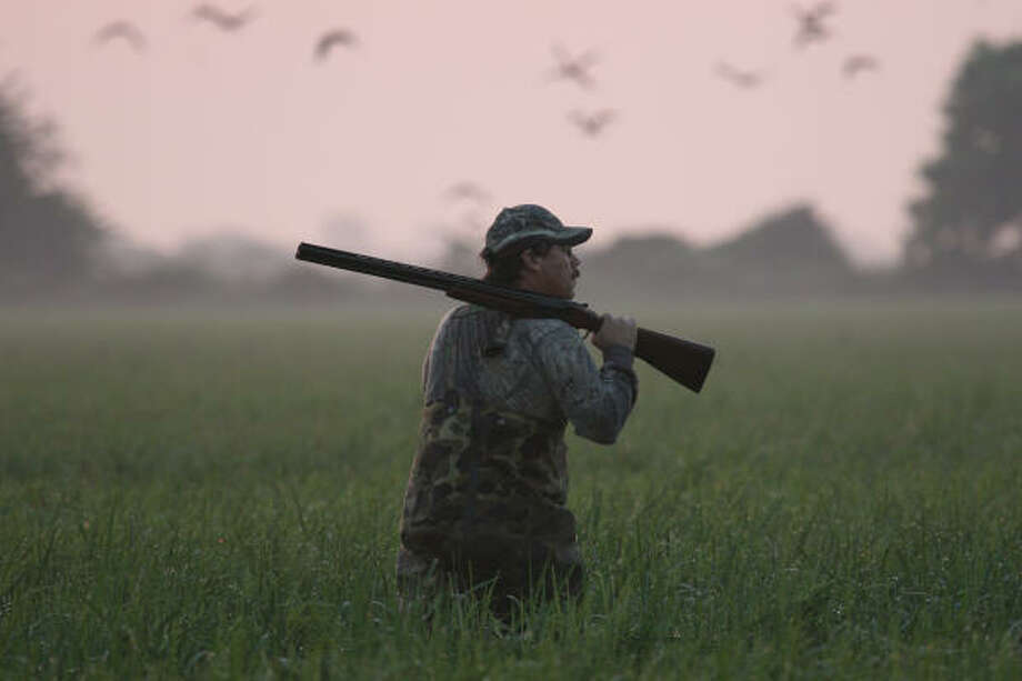 Waterfowlers headed out for the upcoming teal-only hunting season should find their best opportunities in the marshes and coastal prairie wetlands along the upper Texas coast. Outstanding numbers of bluewings, the focus of the early season, have made it to the coast over the past two weeks. Photo: Shannon Tompkins, Chronicle