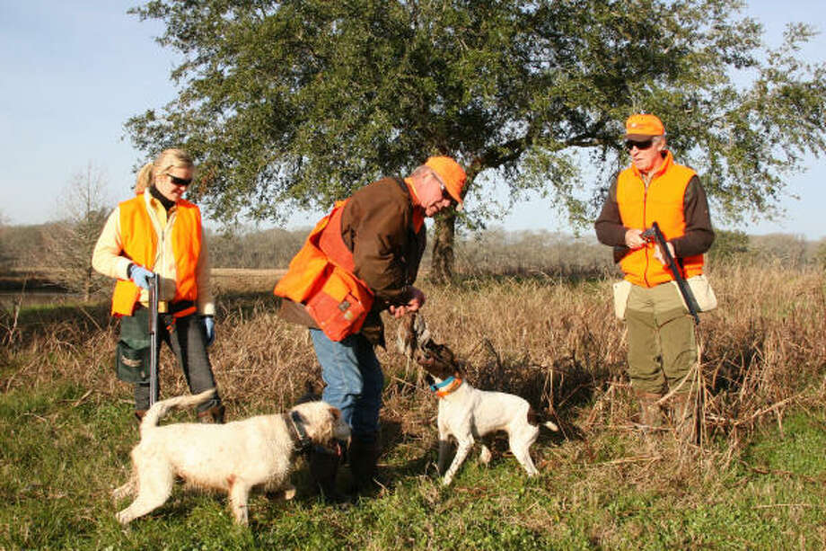 Dog handler Doug Growden (above, center) recovers quail taken by Whitney Easterling (left) and father Jim Easterling. Photo: Joe Doggett, For The Chronicle