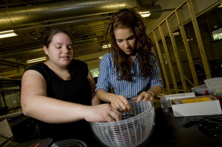 "Rice University undergraduates Lila Kerr, left, and Lauren Theis assemble a ""Sally Centrifuge,"" a low-cost device that could help doctors diagnose anemia in rural parts of the world. Photo: Jeff Fitlow, Rice University"