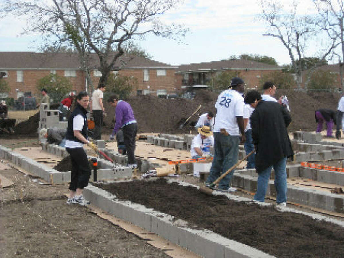 The first planting at Westbury Community Garden.