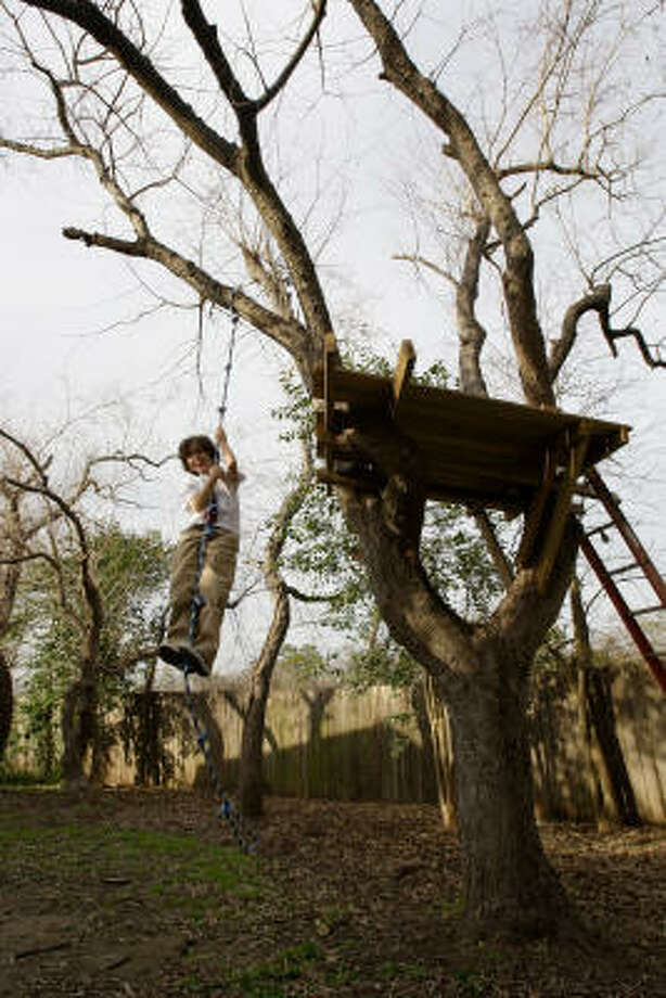 Ben Havlak, 11, son of Houston Chronicle writer Lisa Gray, has a treehouse in a backyard tallow tree. Tallow trees were once planted in Houston yards as ornamentals but are now elbowing out native plants. Photo: Melissa Phillip, Chronicle