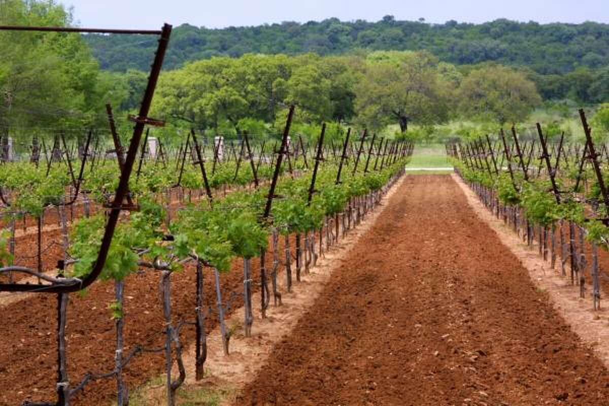 Texas is the fifth-largest grape- and wine-producing state in the U.S., with more than 220 family-owned vineyards, including the Fall Creek Winery in Tow.