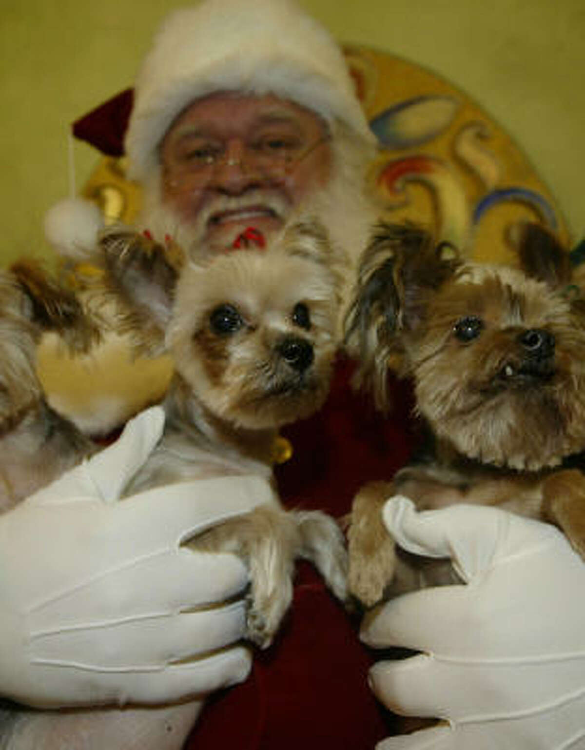 John Tobey helped these terriers with their holiday wishes in 2008 at the Galleria.