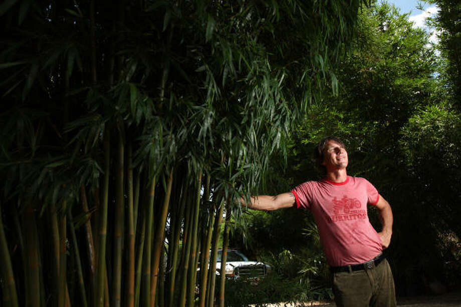 David Cater, owner of Utility Research Garden in Brazoria County, grows organic fruits and veggies, but mostly, he grows bamboo. He sells it to landscapers, but at the Midtown farmers market, he also sells fresh bamboo shoots. Photo: Mayra Beltran, Chronicle