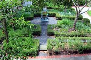March Mart offers a wide variety of herbs and vegetables for the edible garden, as well as thousands of rarely available varieties of ornamental plants.