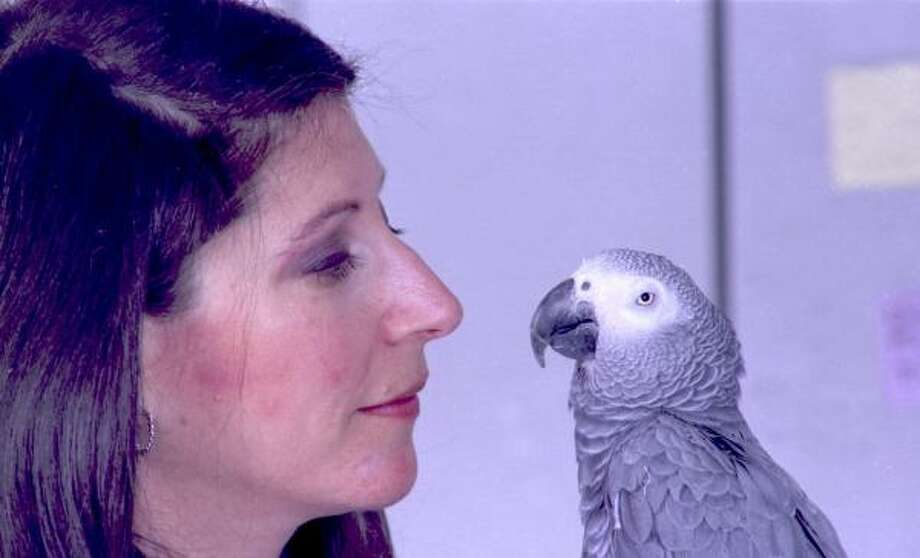 Ethologist Irene M. Pepperberg with Alex, her African gray parrot. Photo: AP