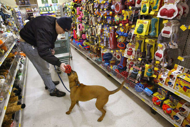Terry Teahan and his dog Ceili play as they shop at a Petsmart store in Niles, Ill.