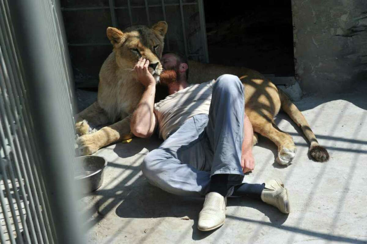 Alexander Pylyshenko rests together with an African lioness Katya in his private Zoo at his yard in a small Ukrainian city of Vasylivka on August 3, 2011. Pylyshenko is going to live together with the couple of African lions Katya and Samson in their open-air cage during next 35 days and the nights to collect money for the Zoo keeping, and also to attract the attention of the public to the poor conditions of the wild animals living in Ukrainians private Zoos. AFP PHOTO/ SERGEI SUPINSKY