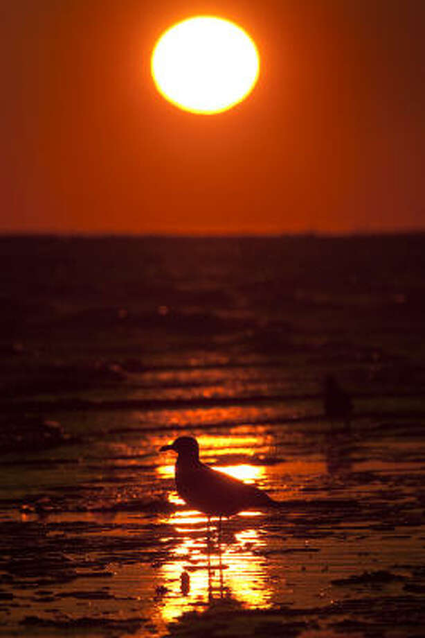 Early risers or late-night partiers can catch the sunrise on the east end of the island in Galveston. Photo: Smiley N. Pool, Houston Chronicle