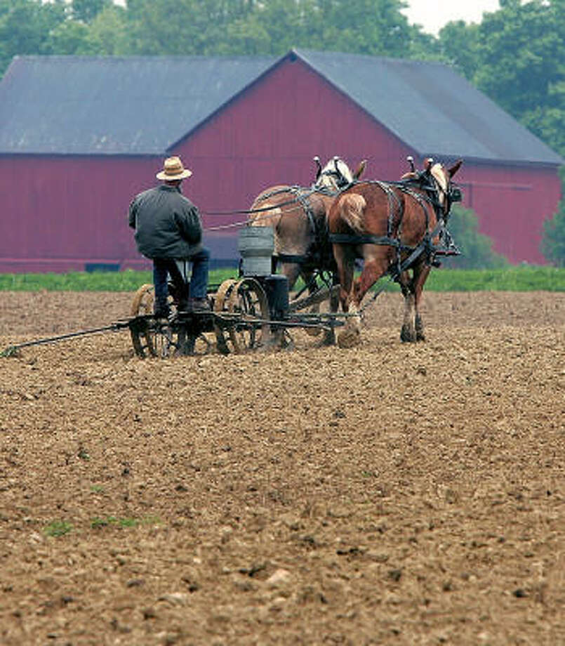 As housing subdivisions and strip malls suck up farmland, many Amish have traded their plows for profits in endeavors such as this co-op farm. Photo: PHIL MASTURZO, AKRON BEACON JOURNAL