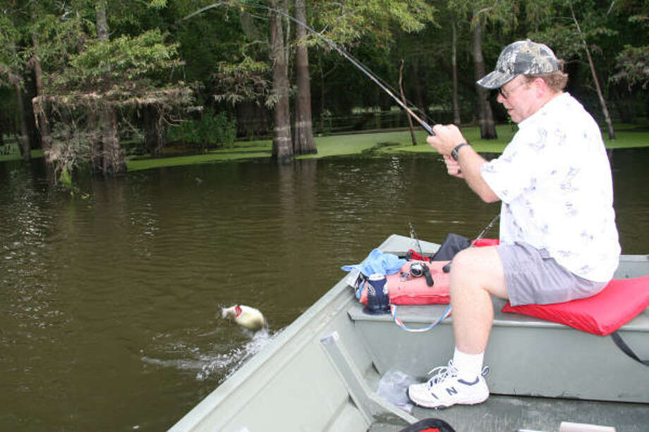 Irresponsible boaters can make a peaceful day on a bayou turn sour real quick, which is why anglers should be mindful of all their surroundings — not just their catch. Photo: Shannon Tompkins, Chronicle