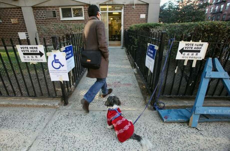 A dog waits for its owner to vote in Manhattan. Photo: Mario Tama, Getty Images