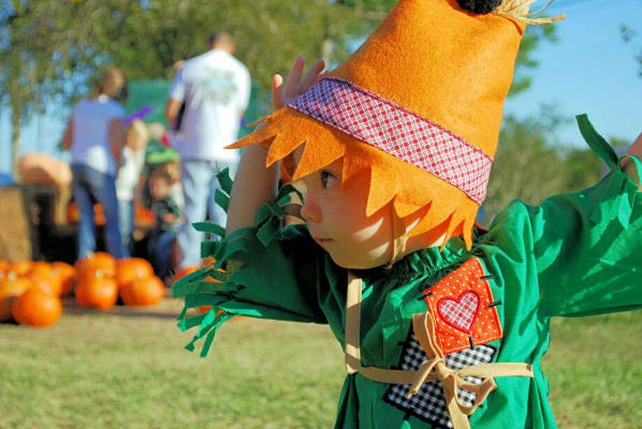 Little Scarecrow Photo: Deb-b-do, Chron.commons