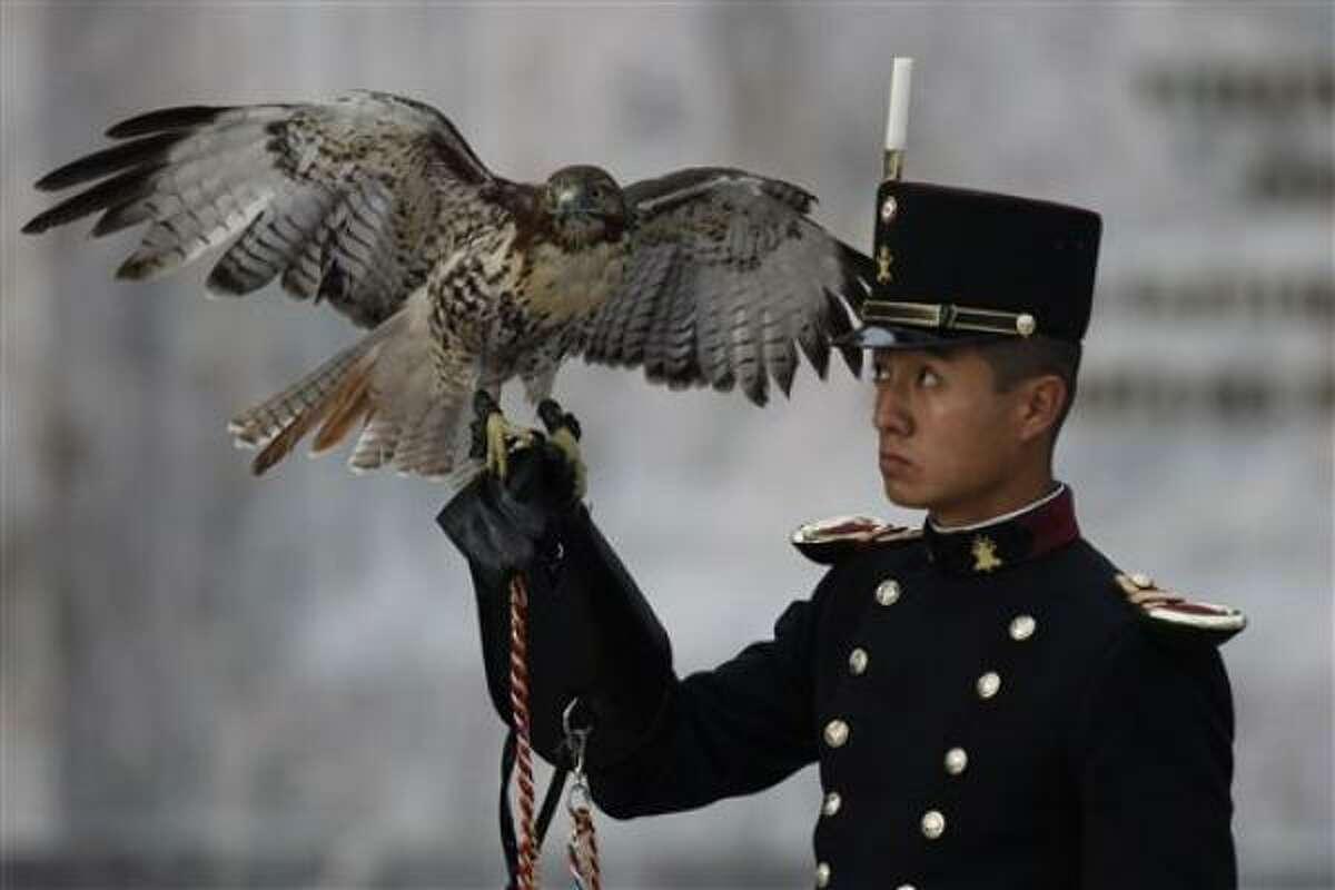 Un soldado sostiene un águila durante los preparativos de seguridad.