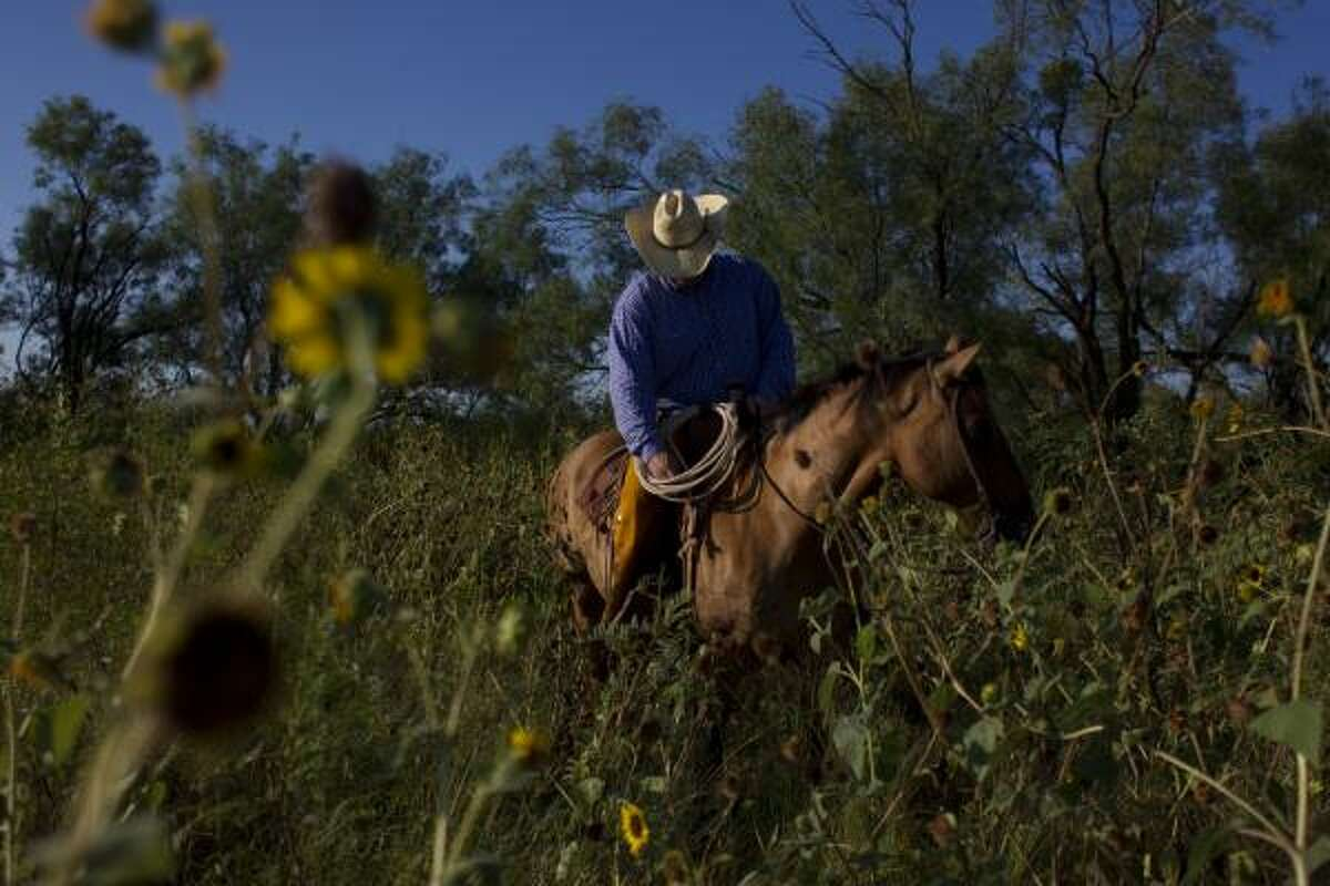 Portrait of Chad Gibson, 37, a cattle rancher and agriculture insurance salesman in Haskell. Gibson, said he and many others vote democrat, because,