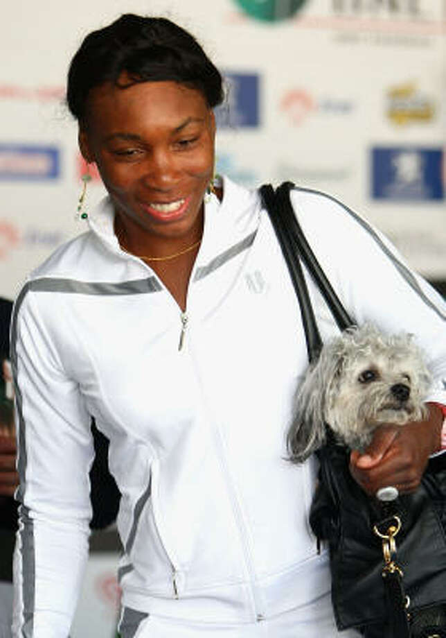 Venus Williams and her pal. Photo: Ryan Pierse, Getty Images