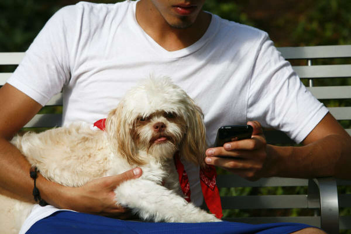 But Salvador Linares and Ax, a Shih Tzu, take a break.