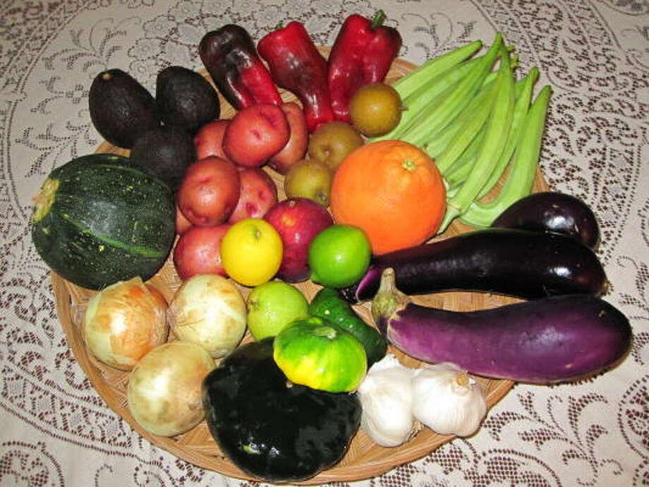 Photo: Urban Harvest