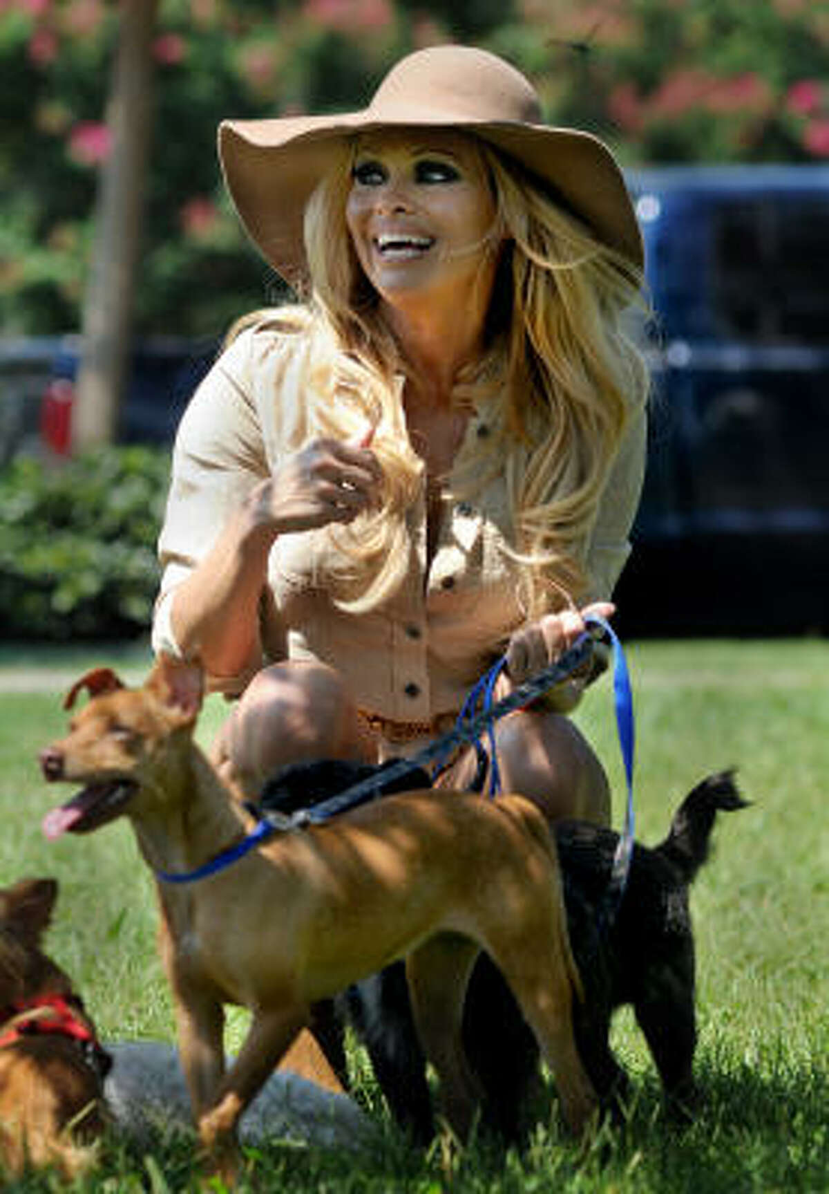 Actress Pamela Anderson takes several dogs for a walk on Monday, Aug. 2, 2010, in New Orleans. Anderson was on hand to send off about 50 dogs that are being moved from Louisiana to Virginia who've been orphaned by the oil spill in the Gulf of Mexico. Anderson chose two dogs to adopt and take home herself.