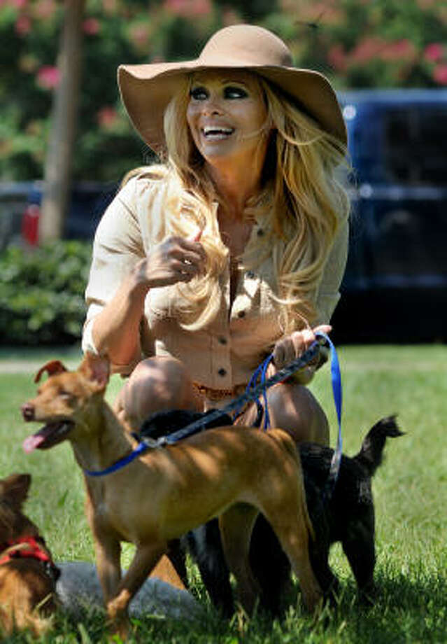 Actress Pamela Anderson takes several dogs for a walk on Monday, Aug. 2, 2010, in New Orleans. Anderson was on hand to send off about 50 dogs that are being moved from Louisiana to Virginia who've been orphaned by the oil spill in the Gulf of Mexico.  Anderson chose two dogs to adopt and take home herself. Photo: Chuck Cook, AP