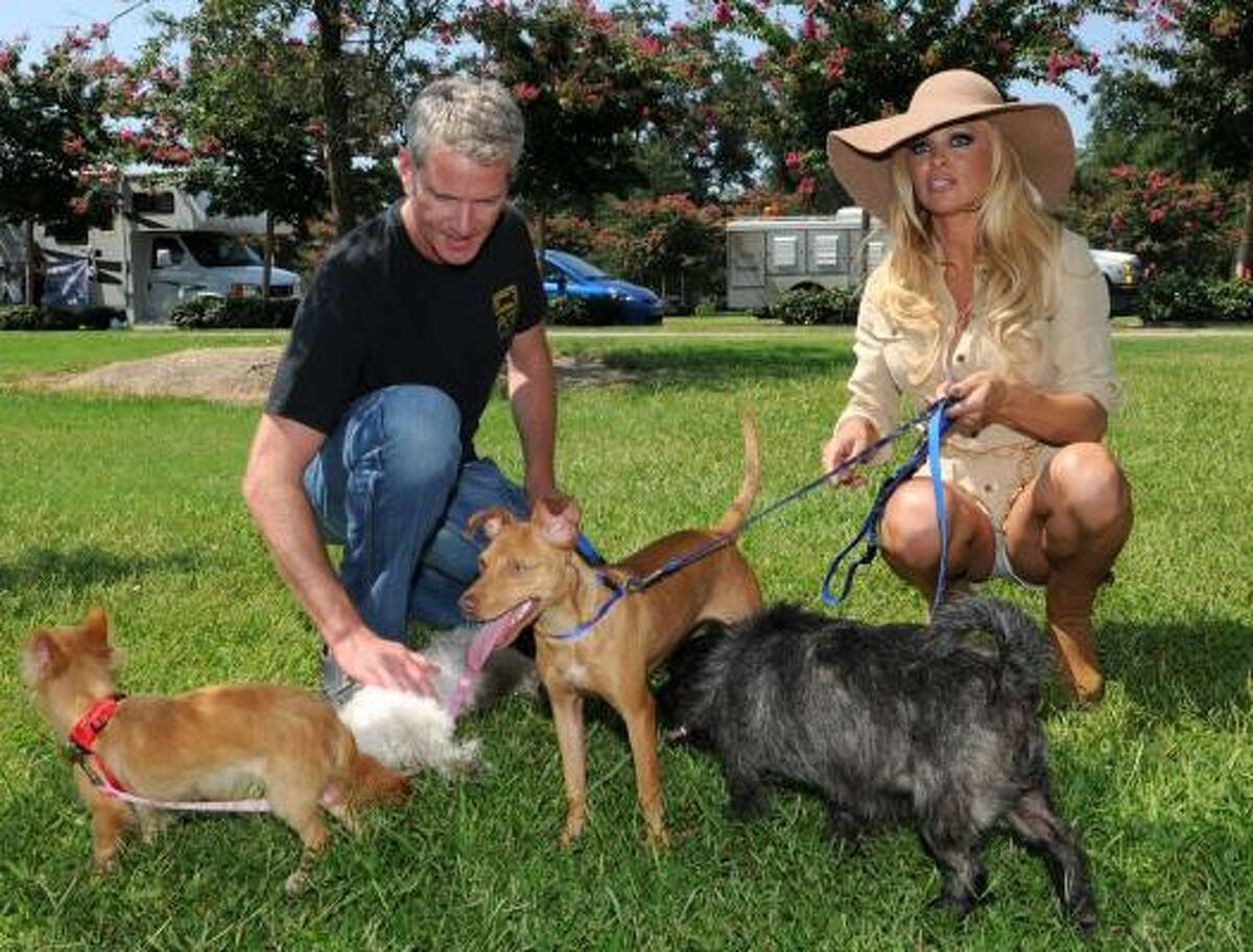 Dan Mathews, Sr. Vice President of PETA, and actress Pamela Anderson play with some of the roughly 50 orphaned dogs that are being moved from Louisiana to Virginia on Monday, Aug. 2, 2010, in New Orleans.