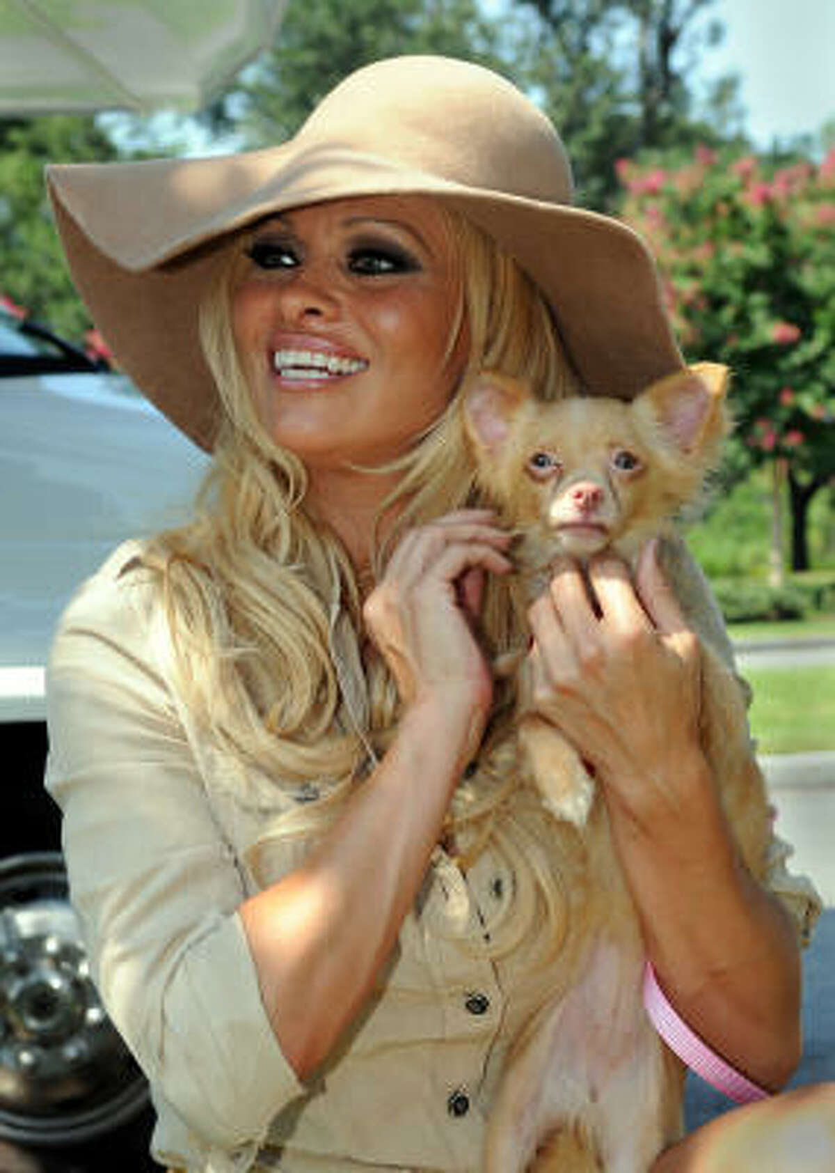 Actress Pamela Anderson holds an orphaned Chihuahua mix that she named Bardot on Monday, Aug. 2, 2010, in New Orleans. Anderson paid to move about 50 dogs that lost their homes due to the oil spill from Louisiana to Virginia. The actress chose two dogs, including Bardot, to adopt herself.