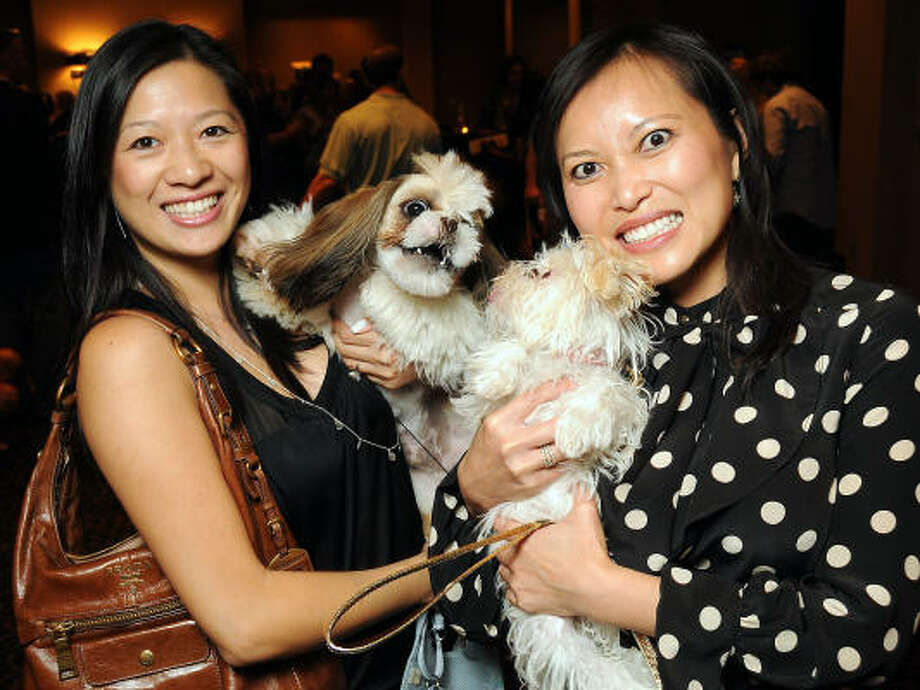 "Christine Ho with Maui and Leanna Tran with Cali at the ""Dog Days of Summer"" Yappy Hour at Hotel Derek benefiting Citizens for Animal Protection and Golden Beginnings Golden Retriever Rescue. Photo: Dave Rossman, For The Chronicle"