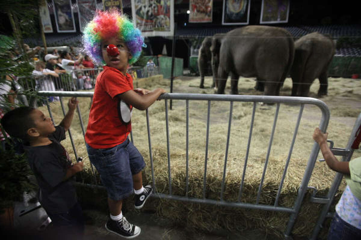 Joe Jefferson, 5, is excited to see elephants during the Animal Open House on opening night for the new Ringling Bros and Barnum & Bailey production ZING ZANG ZOOM at Reliant Stadium in Houston.