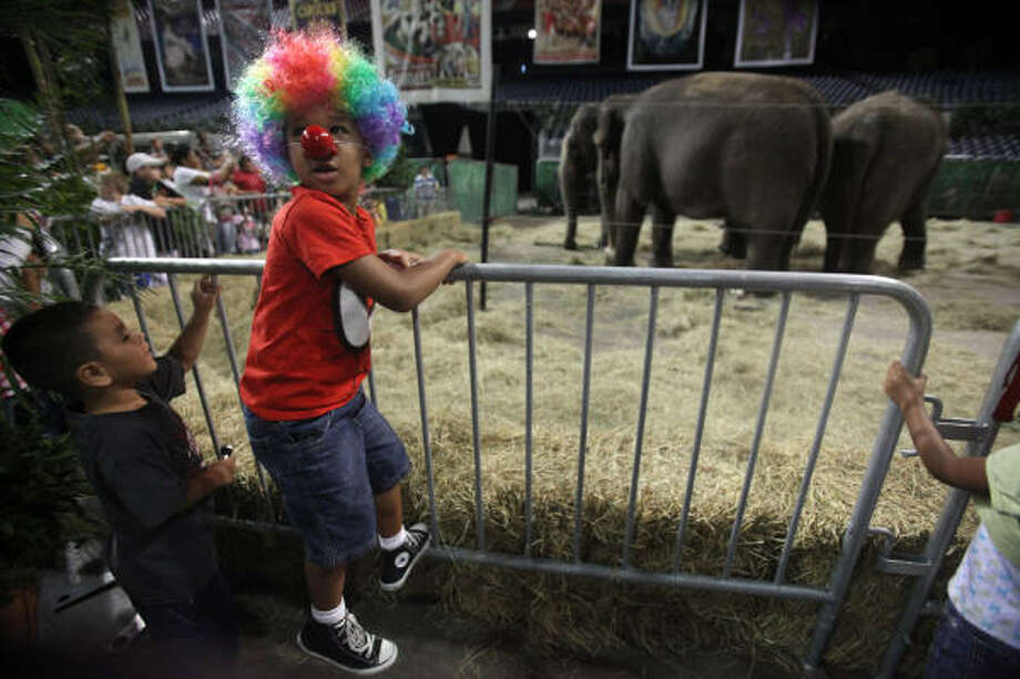 Joe Jefferson, 5, is excited to see elephants during the Animal Open House on opening night for the new Ringling Bros and Barnum & Bailey production ZING ZANG ZOOM at Reliant Stadium in Houston. Photo: Mayra Beltran, Chronicle