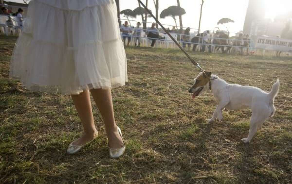Tala holds her dog Litchy, a Jack Russell, as she competes in the friendliest dog category during a dog show organized by Beirut for the Ethical Treatment of Animals, in Beirut, Lebanon, June 19.