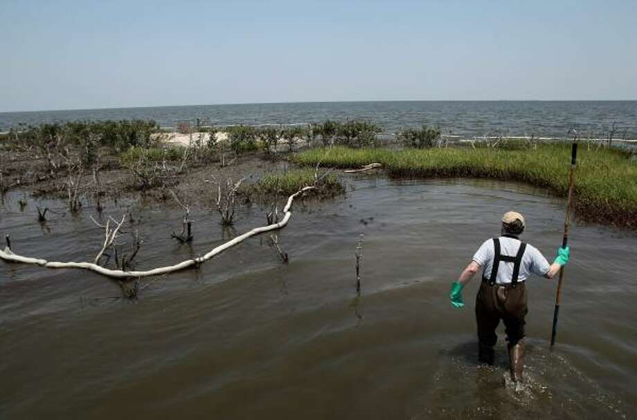 Douglas Inkley with the National Wildlife Federation surveys an island hit by oil in Barataria Bay in Louisiana. Photo: Jae C. Hong, AP