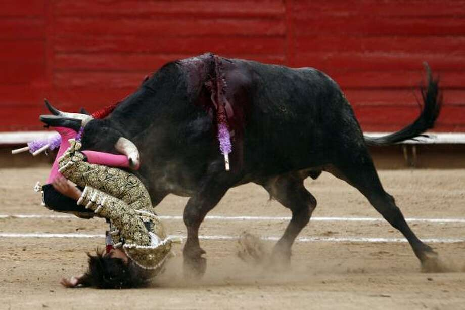 French-Mexican bullfighter Michel Lagravere, 12 is tossed by a bull after falling on Sunday in Mexico City. Michelito was taken from the ring for X-rays. His father said he suffered only bruises. Photo: Miguel Tovar, AP