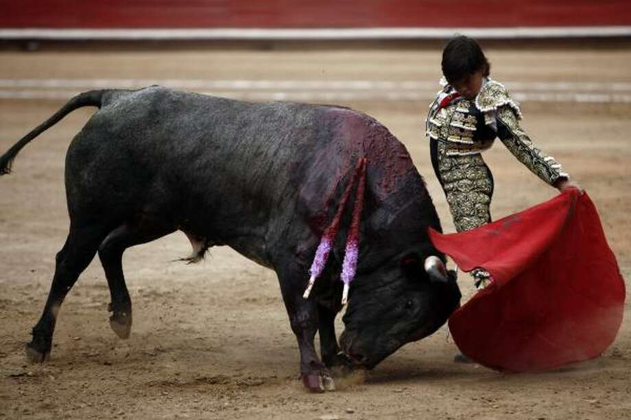 French-Mexican bullfighter Michel Lagravere, known as Michelito, bullfights in Mexico City, Sunday, June 6, 2010. Photo: Miguel Tovar, AP