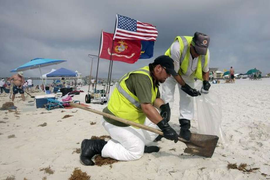Oil cleanup workers hired by BP pick up tar balls Sunday as they work along Pensacola Beach, Fla. Photo: Dave Martin, Associated Press