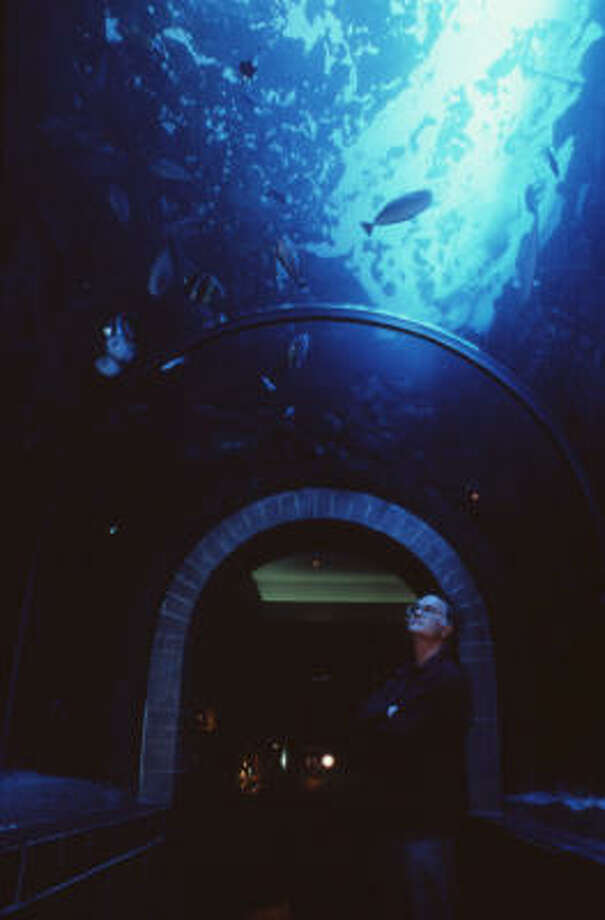 Dallas/Fort Worth attraction: The aquarium. 