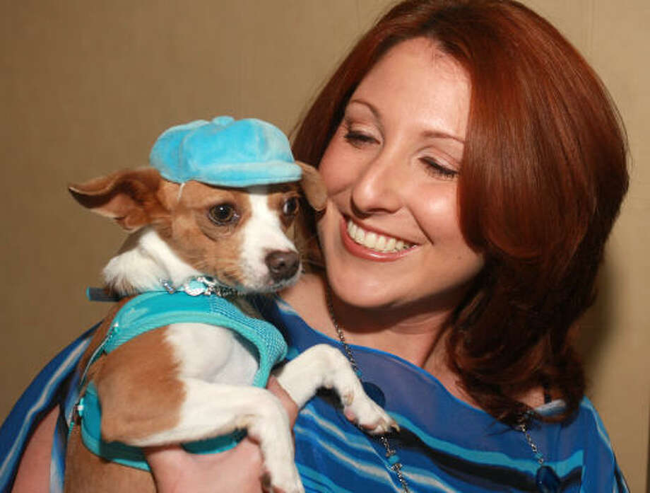 Meet Calvin, the winner of Project Derek Dog. Calvin lives with Chrissie DeCesare. Photo: Gary Fountain, For The Chronicle