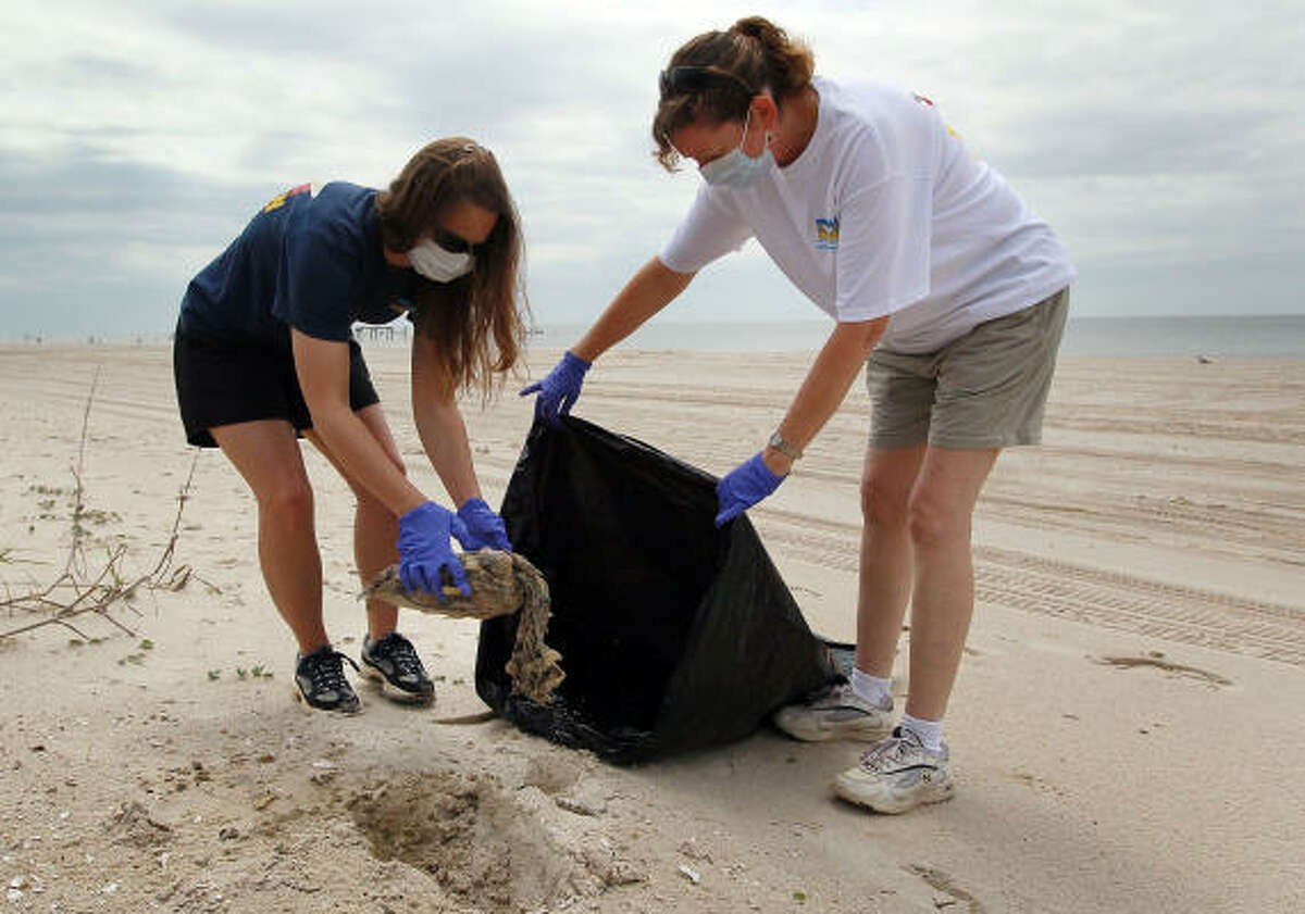 Megan Broadway, left, and Wendy Hatchett from the Institute for Marine Mammal Studies pick up a dead sea turtle Monday in Pass Christian, Miss. It is unknown if the turtle died because of the oil spill.