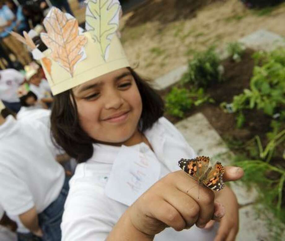 "First-grader Ashley Hernandez admires a butterfly during Doubletree Hotels'  Teaching Kids to CARE Spring 2010 ""Great Community Tree Hug"" at Thomas J. Pilgrim Academy in Houston. Students planted trees, herbs and other plants. Photo: Dave Einsel, AP Images For Doubletree Hotels"