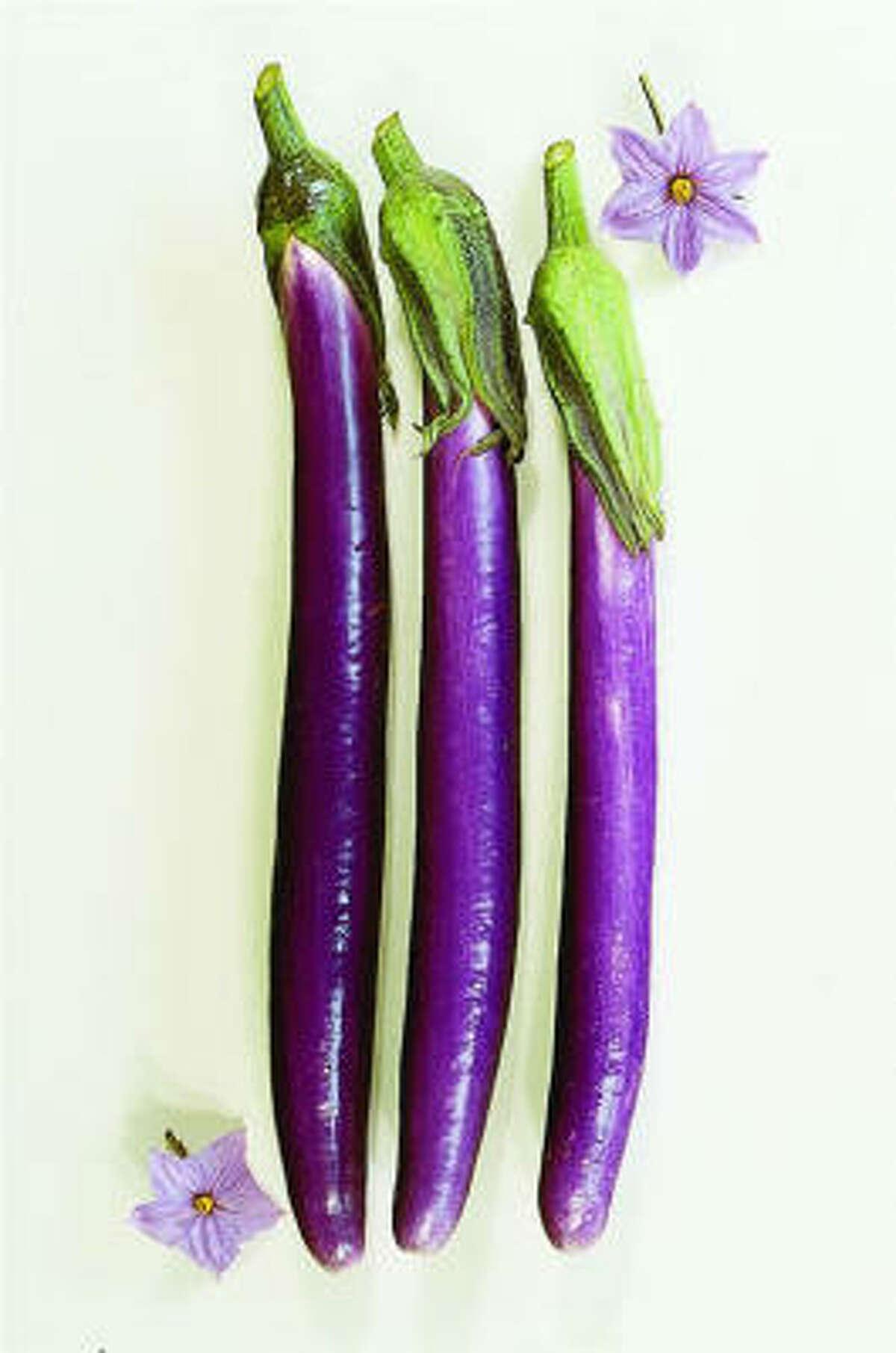`Machiaw' eggplant
