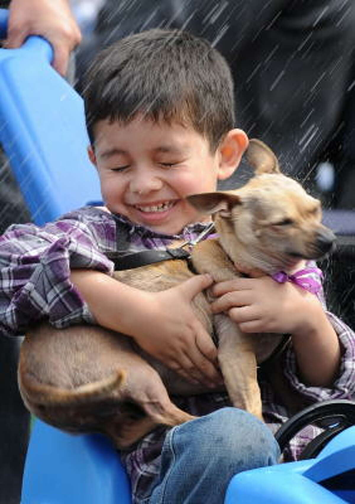 A boy and his pet chihuahua wince as they are sprinkled with holy water by Cardinal Roger Mahony at the Blessing of the Animals in downtown Los Angeles on Saturday.