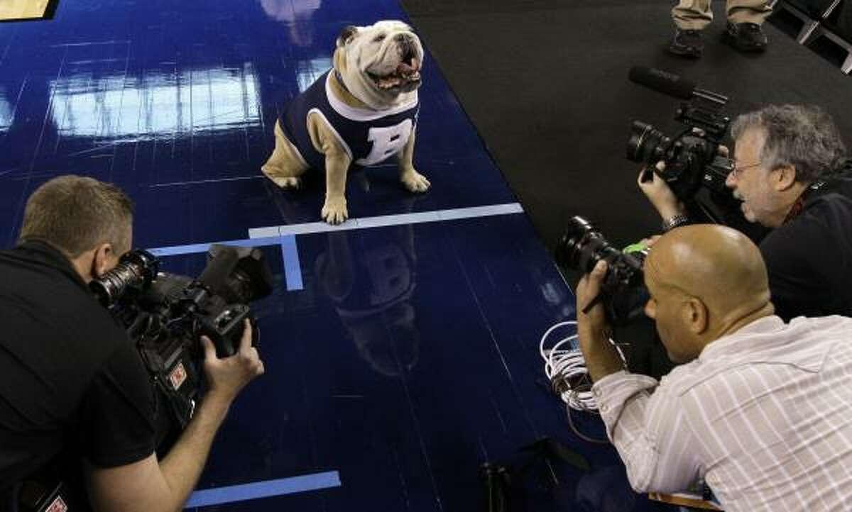 Blue's social calendar has gotten even busier with the success of the Butler men's basketball team.