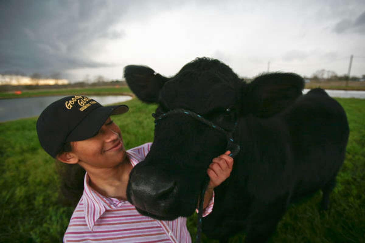 Domonique Goff, 17, and her heifer Marci.