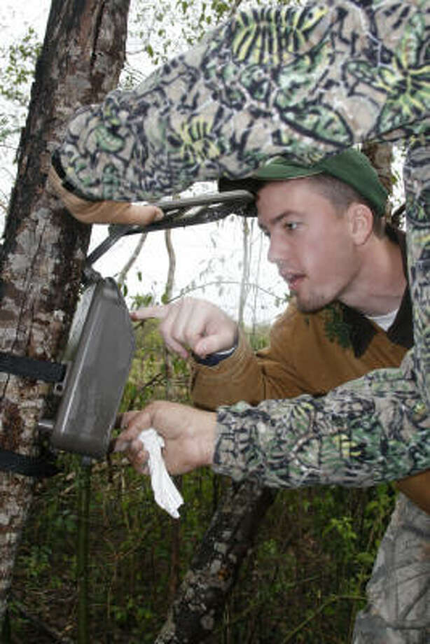 "Joe Holbrook, a graduate student at Texas A&M- Kingsville's Caesar Kleberg Wildlife Research Institute, checks photos of an ocelot captured on one of the 40 remote-sensing ""game cameras"" used to document the wild felines on Rancho Caracol in northeast Mexico. The cameras have documented five species of wild cats - ocelot, jaguar, jaguarundi, cougar, bobcat - on the 9,500-acre tract along the Rio Soto la Marina, about 150 miles south of Brownsville. Photo: Shannon Tompkins, Chronicle"