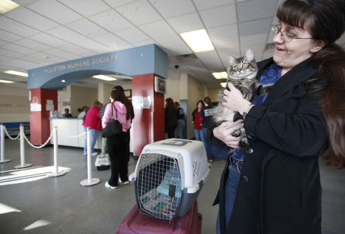 Rosalie Denison carries 'Aiden' a male cat she is trying to find a home for after he is neutered at the Houston Humane Society.