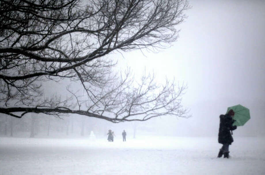 A woman uses her umbrella to shield herself from blowing snow in  New York's Central Park. Photo: Mary Altaffer, AP