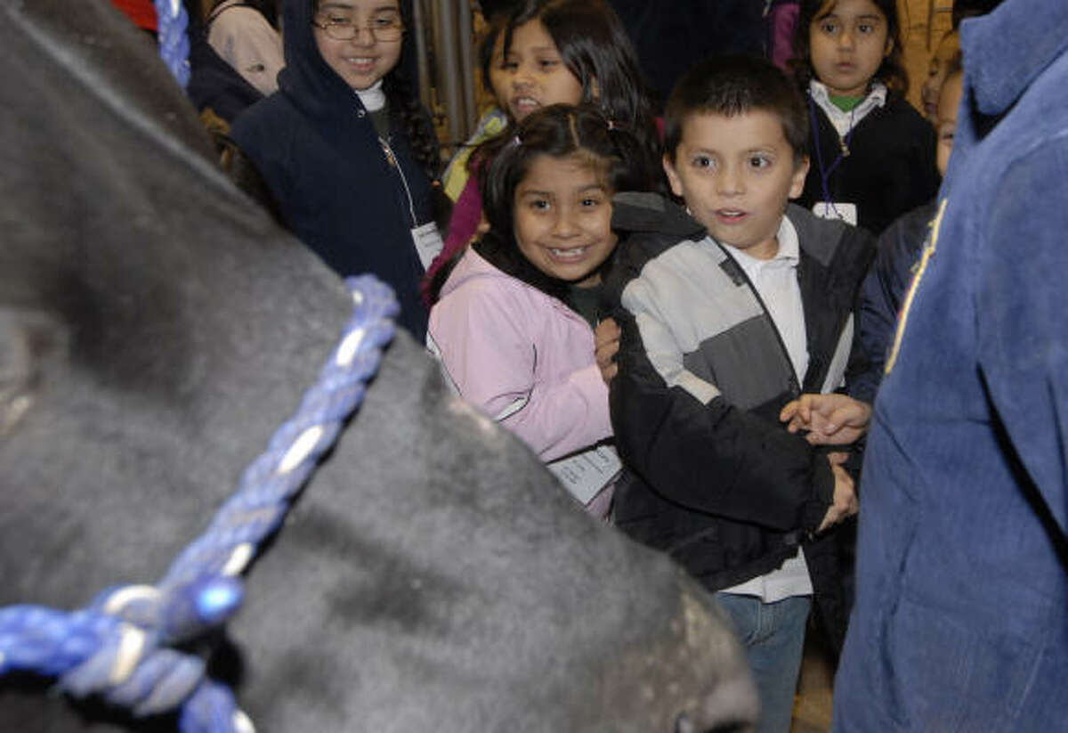 Ridgecrest Elementary 1st graders Gabriela Lopez and Carlos Mayorga are surprised when a cow stomps its foot at the Spring Branch ISD Ag Center Thursday 2/04/10.