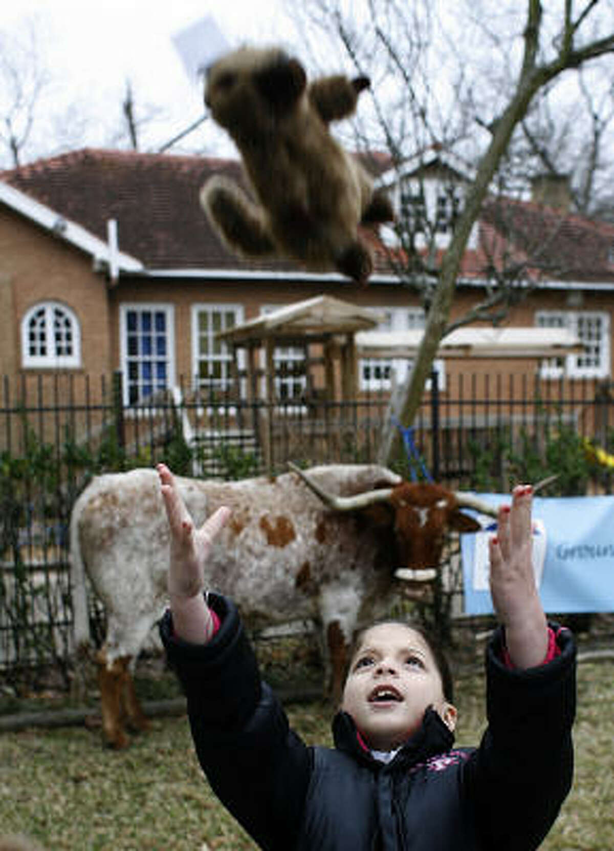 Serena Reyna, 7, a first grader at MacGregor Elementary School tosses up a plush groundhog toy near Alamo the longhorn.