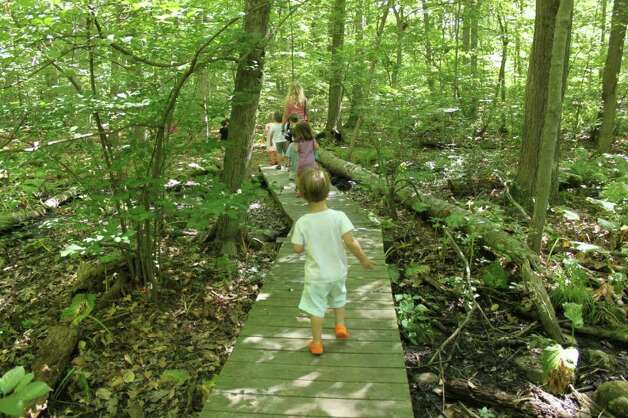 Children walk through the woods at the Darien Nature Center. The center recently announced its fall programming. Photo: Contributed Photo